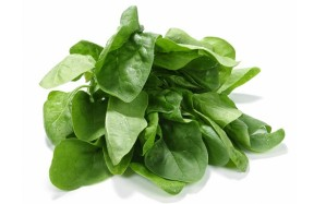 Spinach_2337460b